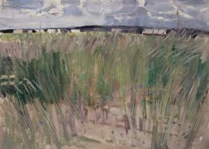 Ржаное поле Загонек