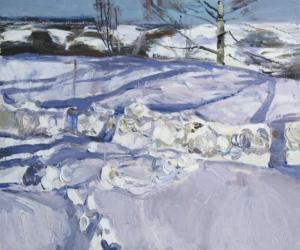 Тени на снегу Загонек