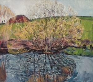 Ива у ручья Загонек